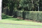 Abbotsford VIC Wire fencing 15